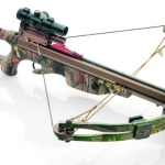 Crossbow Hunting in Iowa: A Beginner's Tutorial